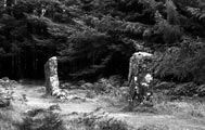 Standing stones near Dervaig