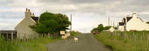 Busy roads of Skye